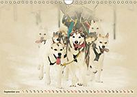 Sledgedogs 2019 / UK-Version (Wall Calendar 2019 DIN A4 Landscape) - Produktdetailbild 9