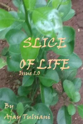 Slice Of Life (Issue 1.0), Ajay Tulsiani