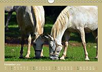 Slowenien - Triglav, Karst und Adria (Wandkalender 2019 DIN A4 quer) - Produktdetailbild 11