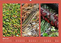 Slowenien - Triglav, Karst und Adria (Wandkalender 2019 DIN A2 quer) - Produktdetailbild 4