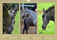 Slowenien - Triglav, Karst und Adria (Wandkalender 2019 DIN A4 quer) - Produktdetailbild 8