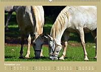 Slowenien - Triglav, Karst und Adria (Wandkalender 2019 DIN A2 quer) - Produktdetailbild 11