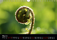 Small miracles of daily routine (Wall Calendar 2019 DIN A4 Landscape) - Produktdetailbild 5