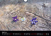Small miracles of daily routine (Wall Calendar 2019 DIN A4 Landscape) - Produktdetailbild 4