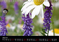 Small miracles of daily routine (Wall Calendar 2019 DIN A4 Landscape) - Produktdetailbild 7