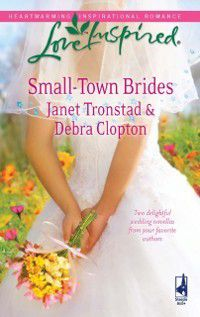 Small-Town Brides: A Dry Creek Wedding (Dry Creek, Book 12) / A Mule Hollow Match (Mills & Boon Love Inspired), Janet Tronstad, Debra Clopton