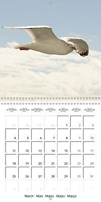 Smart Seagulls (Wall Calendar 2019 300 × 300 mm Square) - Produktdetailbild 3