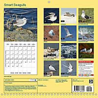 Smart Seagulls (Wall Calendar 2019 300 × 300 mm Square) - Produktdetailbild 13