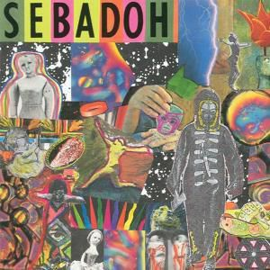 Smash Your Head On The Punk Ro, Sebadoh