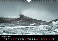Snapper Rocks Wild (Wall Calendar 2019 DIN A4 Landscape) - Produktdetailbild 12