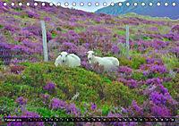 Snowdonia - Wales' wilder Norden (Tischkalender 2019 DIN A5 quer) - Produktdetailbild 2