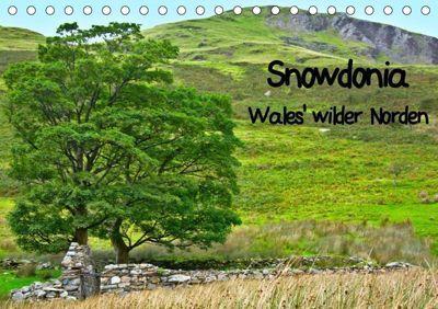 Snowdonia - Wales' wilder Norden (Tischkalender 2019 DIN A5 quer), Lost Plastron Pictures