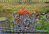Snowdonia - Wales' wilder Norden (Tischkalender 2019 DIN A5 quer) - Produktdetailbild 11