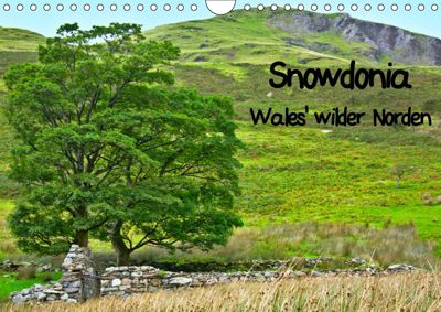 Snowdonia - Wales' wilder Norden (Wandkalender 2019 DIN A4 quer), Lost Plastron Pictures