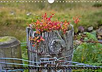 Snowdonia - Wales' wilder Norden (Wandkalender 2019 DIN A4 quer) - Produktdetailbild 11