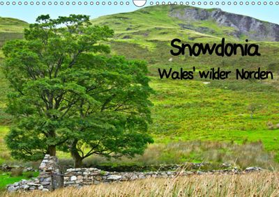 Snowdonia - Wales' wilder Norden (Wandkalender 2019 DIN A3 quer), Lost Plastron Pictures