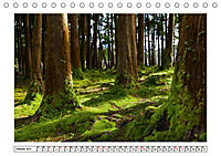 São Miguel - Naturschönheit der Azoren (Tischkalender 2019 DIN A5 quer) - Produktdetailbild 10