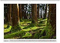 São Miguel - Naturschönheit der Azoren (Wandkalender 2019 DIN A2 quer) - Produktdetailbild 10