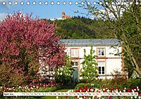 So schön ist die Zweiburgenstadt Weinheim (Tischkalender 2019 DIN A5 quer) - Produktdetailbild 4
