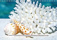 So schön sind die Malediven (Wandkalender 2019 DIN A4 quer) - Produktdetailbild 9