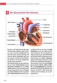 So schützen Sie Ihr Herz - Produktdetailbild 4