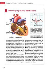 So schützen Sie Ihr Herz - Produktdetailbild 3
