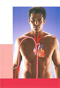So schützen Sie Ihr Herz - Produktdetailbild 1