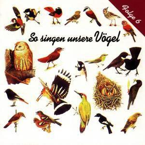So Singen Unsere Vögel 6, Vogelstimmen