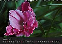 Soft Rock Visual Music of Flowers (Wall Calendar 2019 DIN A3 Landscape) - Produktdetailbild 2