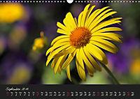 Soft Rock Visual Music of Flowers (Wall Calendar 2019 DIN A3 Landscape) - Produktdetailbild 9