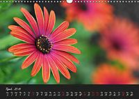 Soft Rock Visual Music of Flowers (Wall Calendar 2019 DIN A3 Landscape) - Produktdetailbild 4