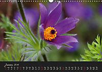 Soft Rock Visual Music of Flowers (Wall Calendar 2019 DIN A3 Landscape) - Produktdetailbild 1