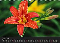 Soft Rock Visual Music of Flowers (Wall Calendar 2019 DIN A3 Landscape) - Produktdetailbild 7