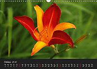 Soft Rock Visual Music of Flowers (Wall Calendar 2019 DIN A3 Landscape) - Produktdetailbild 10