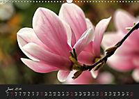 Soft Rock Visual Music of Flowers (Wall Calendar 2019 DIN A3 Landscape) - Produktdetailbild 6