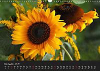 Soft Rock Visual Music of Flowers (Wall Calendar 2019 DIN A3 Landscape) - Produktdetailbild 11