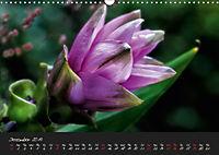 Soft Rock Visual Music of Flowers (Wall Calendar 2019 DIN A3 Landscape) - Produktdetailbild 12