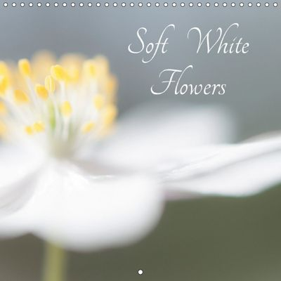 Soft White Flowers (Wall Calendar 2018 300 × 300 mm Square), Andrew Kearton