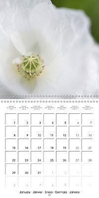Soft White Flowers (Wall Calendar 2018 300 × 300 mm Square) - Produktdetailbild 1