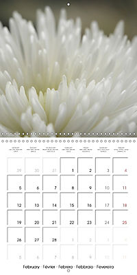 Soft White Flowers (Wall Calendar 2018 300 × 300 mm Square) - Produktdetailbild 2