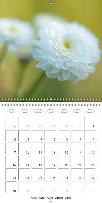 Soft White Flowers (Wall Calendar 2018 300 × 300 mm Square) - Produktdetailbild 4