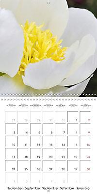 Soft White Flowers (Wall Calendar 2018 300 × 300 mm Square) - Produktdetailbild 9