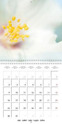Soft White Flowers (Wall Calendar 2018 300 × 300 mm Square) - Produktdetailbild 7
