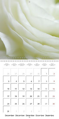 Soft White Flowers (Wall Calendar 2018 300 × 300 mm Square) - Produktdetailbild 12