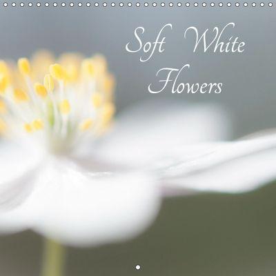 Soft White Flowers (Wall Calendar 2019 300 × 300 mm Square), Andrew Kearton