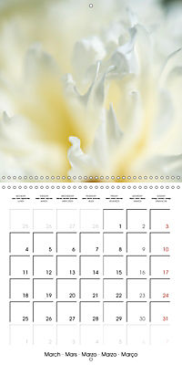 Soft White Flowers (Wall Calendar 2019 300 × 300 mm Square) - Produktdetailbild 3