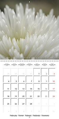 Soft White Flowers (Wall Calendar 2019 300 × 300 mm Square) - Produktdetailbild 2