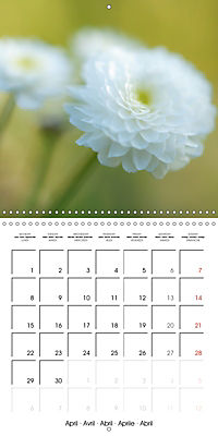 Soft White Flowers (Wall Calendar 2019 300 × 300 mm Square) - Produktdetailbild 4