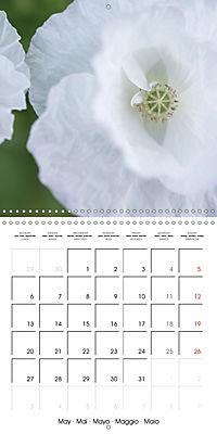 Soft White Flowers (Wall Calendar 2019 300 × 300 mm Square) - Produktdetailbild 5