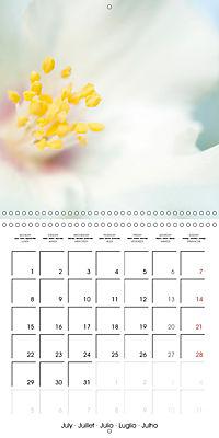 Soft White Flowers (Wall Calendar 2019 300 × 300 mm Square) - Produktdetailbild 7